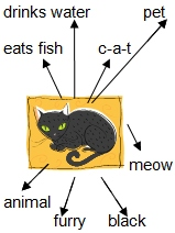 Word web example